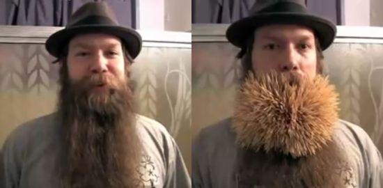 2222 toothpicks in a beard d38wW 6648