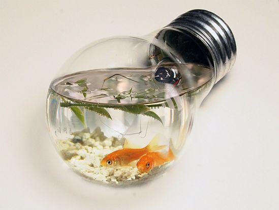 aqua bulb vol 2 by mceric 1333