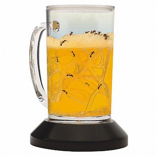 beer ants