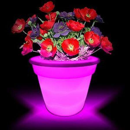 colorplanter