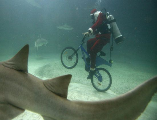 cycling under water Ove7T 6648