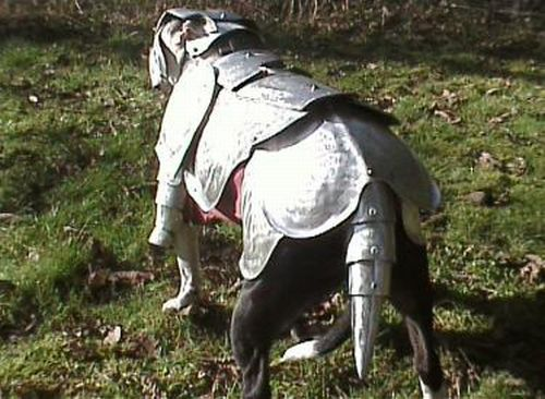 dog armor 2 BY4kO 6648