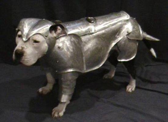 dog armor1 IBodZ 6648