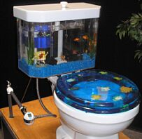 fish n flush aquarium