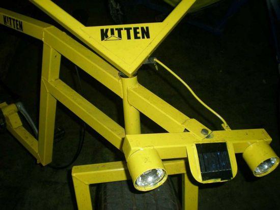 kitten bicycle 4