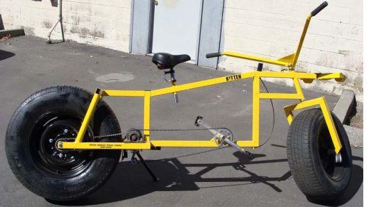 kitten bicycle 5