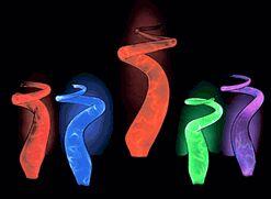 mini sculptured electra plasma lamps