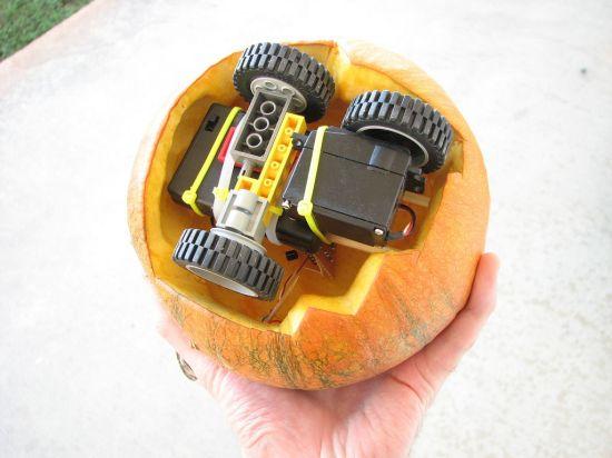 rovin pumpkin 1