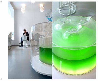 spirulina producing oxygen