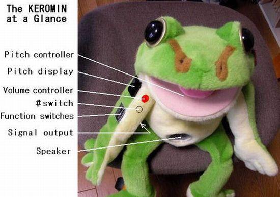 talking frog 1 thumb 450x316 DVU6x 8089