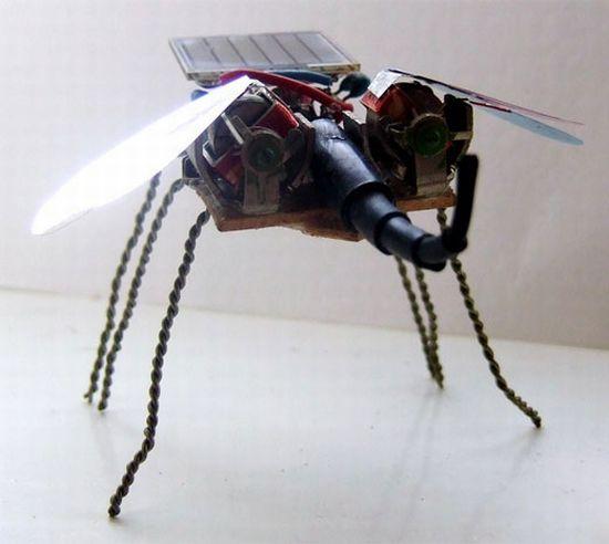 tinyminds bugbot 1 Tl9kO 1333
