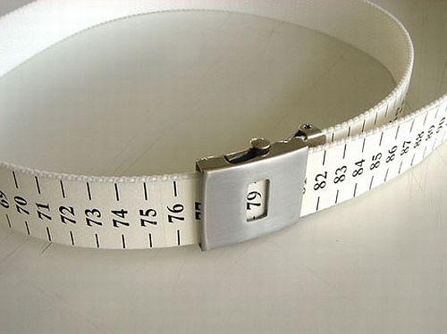 weight belt 2