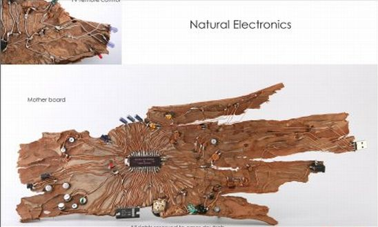wooden mother board