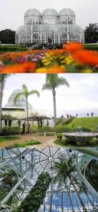 Brazil- Jardim-Botanico