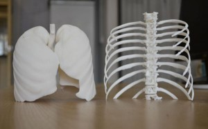 High-Quality-3d-printed-body-parts-uk