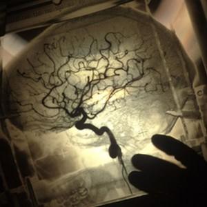 crazy-brain-6b