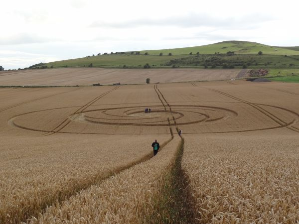 Mysteries of Crop Circles (3)
