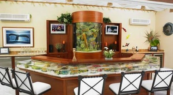 fish tank cum bar table