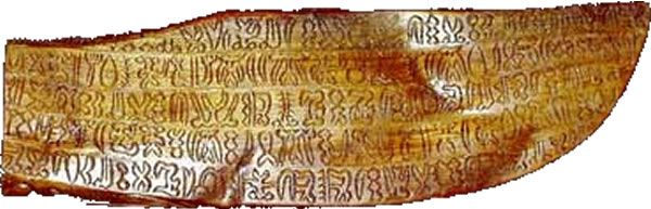 The Rongorongo language script