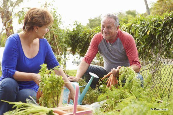 Grow Something New in Your Garden