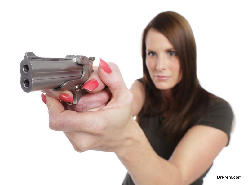 New-Gun-Owner