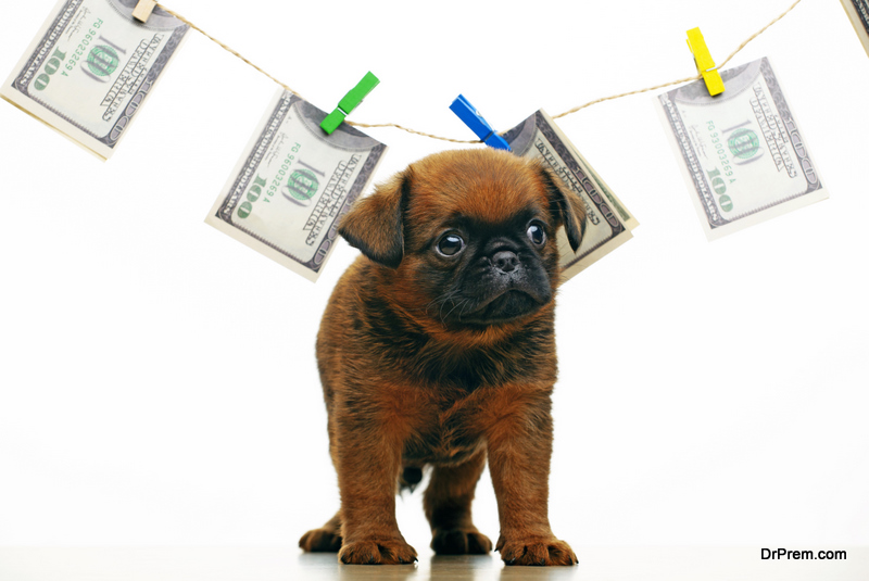 Sales Tax on Pets